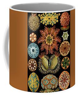 Ascidiae Coffee Mug