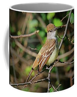 Ash-throated Flycatcher Coffee Mug