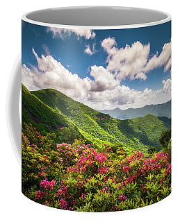 Asheville Nc Blue Ridge Parkway Spring Flowers Scenic Landscape Coffee Mug