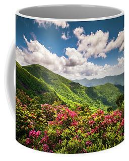 Asheville Nc Blue Ridge Parkway Spring Flowers Scenic Landscape Coffee Mug