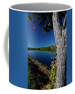 Ashley Reservoir Coffee Mug