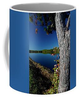 Ashley Reservoir Coffee Mug