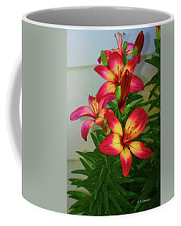 Asian Lilly Spring Time Coffee Mug
