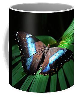 Coffee Mug featuring the photograph Asleep Beneath The Moon by Karen Wiles