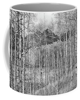 Coffee Mug featuring the photograph Aspen Ambience Monochrome by Eric Glaser