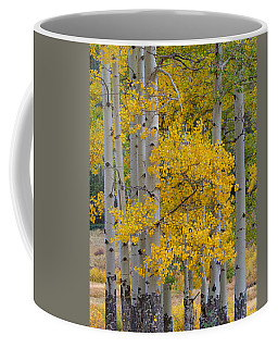 Aspen Bouquet Coffee Mug