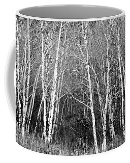 Aspen Forest Black And White Print Coffee Mug