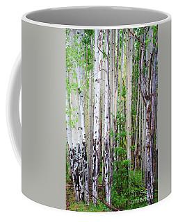 Aspen Grove In The White Mountains Coffee Mug