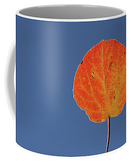 Coffee Mug featuring the photograph Aspen Leaf 1 by Marie Leslie