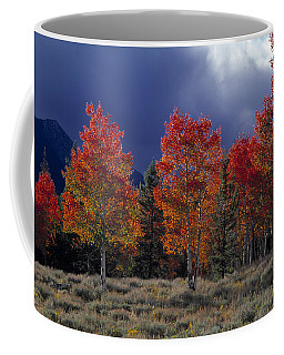 Aspen Light Coffee Mug