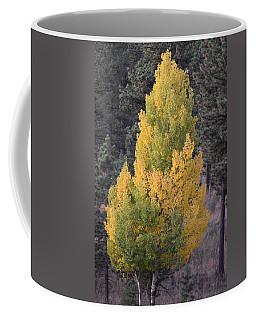 Aspen Tree Fall Colors Co Coffee Mug