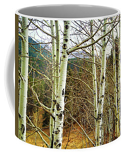 Coffee Mug featuring the photograph Aspen Trunks - Photography by Ann Powell