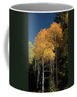 Coffee Mug featuring the photograph Aspens And Sky by Steve Stuller