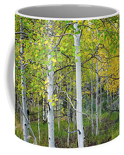 Aspens In Autumn 6 - Santa Fe National Forest New Mexico Coffee Mug by Brian Harig