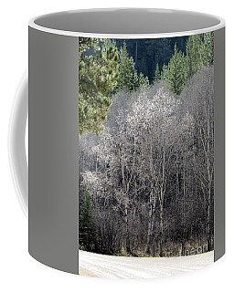 Aspens In Morning Light Coffee Mug