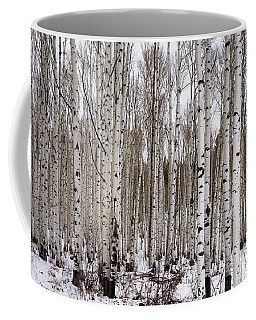 Aspens In Winter - Colorado Coffee Mug