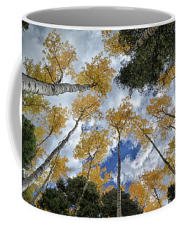 Aspens Reaching Coffee Mug