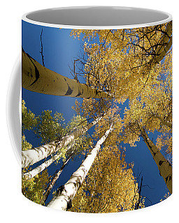 Coffee Mug featuring the photograph Aspens Up by Steve Stuller