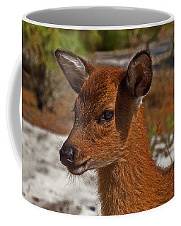 Assateague Island Sika Deer Fawn Coffee Mug