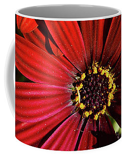 Aster Coming Out Of The Dark Coffee Mug