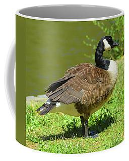 At A Standstill Coffee Mug
