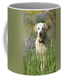 At Attention Coffee Mug by Jim and Emily Bush