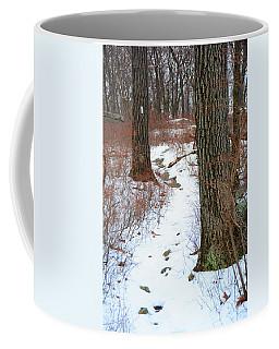 At Harriman State Park Coffee Mug by Raymond Salani III