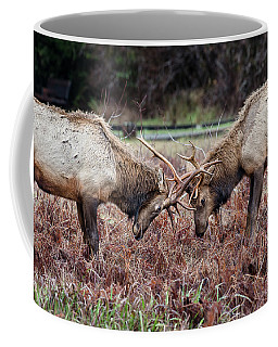 At Loggerheads Coffee Mug