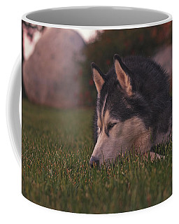At Peace With The World  Coffee Mug