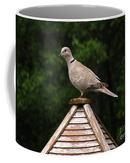 At The Top Of The Bird Feeder Coffee Mug by Donna Brown