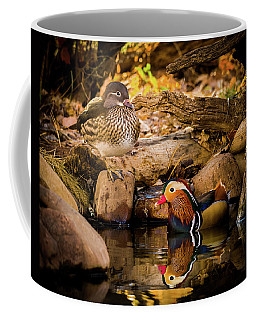 At The Waters Edge - Mandarin Ducks Coffee Mug