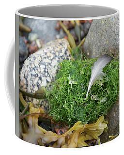 Atlantic Coast Still Life Coffee Mug