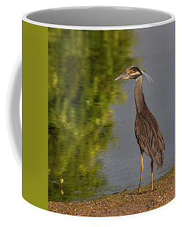 Coffee Mug featuring the photograph Attentive Heron by Jean Noren