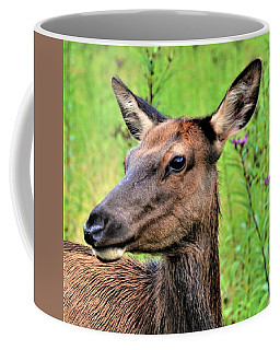Attentive Yearling Coffee Mug