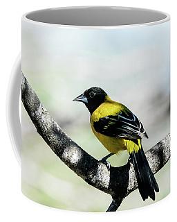 Audubon's Oriole Back Wings Coffee Mug