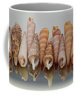 Auger Shells Coffee Mug by Patti Whitten