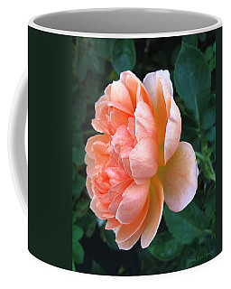 Coffee Mug featuring the photograph August Rose 09 by Joyce Dickens