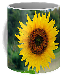 August Sunflower Coffee Mug by Jeff Severson