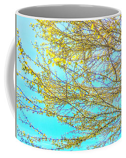 Coffee Mug featuring the photograph  Aura Of Springtime by Connie Handscomb