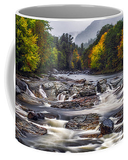 Coffee Mug featuring the photograph Ausable Cascades by Mark Papke