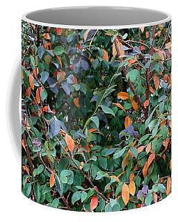 Austin Tree Pano Coffee Mug by Ellen O'Reilly