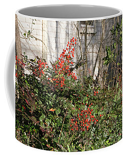 Coffee Mug featuring the photograph Austin Winter Berries by Linda Phelps