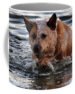 Out For A Swim Coffee Mug