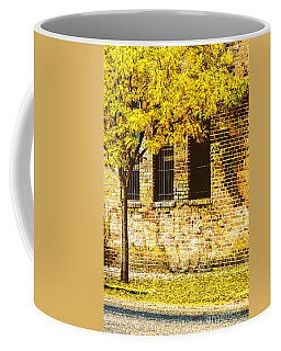 Autumn Along The Street Coffee Mug