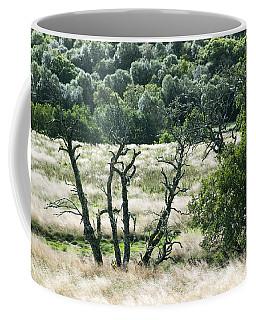 Autumn And Grass In Isle Of Skye, Uk Coffee Mug