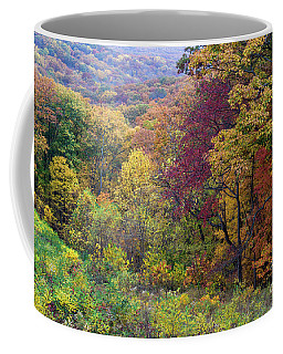 Autumn Arrives In Brown County - D010020 Coffee Mug
