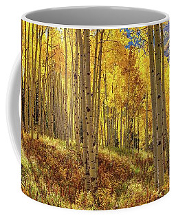 Autumn Aspen Forest Aspen Colorado Panorama Coffee Mug
