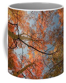 Autumn Aspens In The Sky Coffee Mug