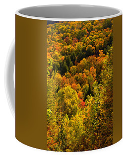 Autumn At Acadia Coffee Mug