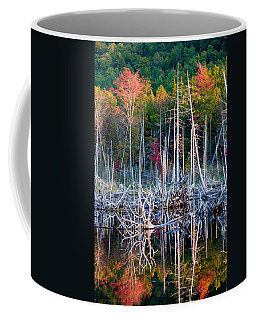Autumn At Moosehead Bog Coffee Mug
